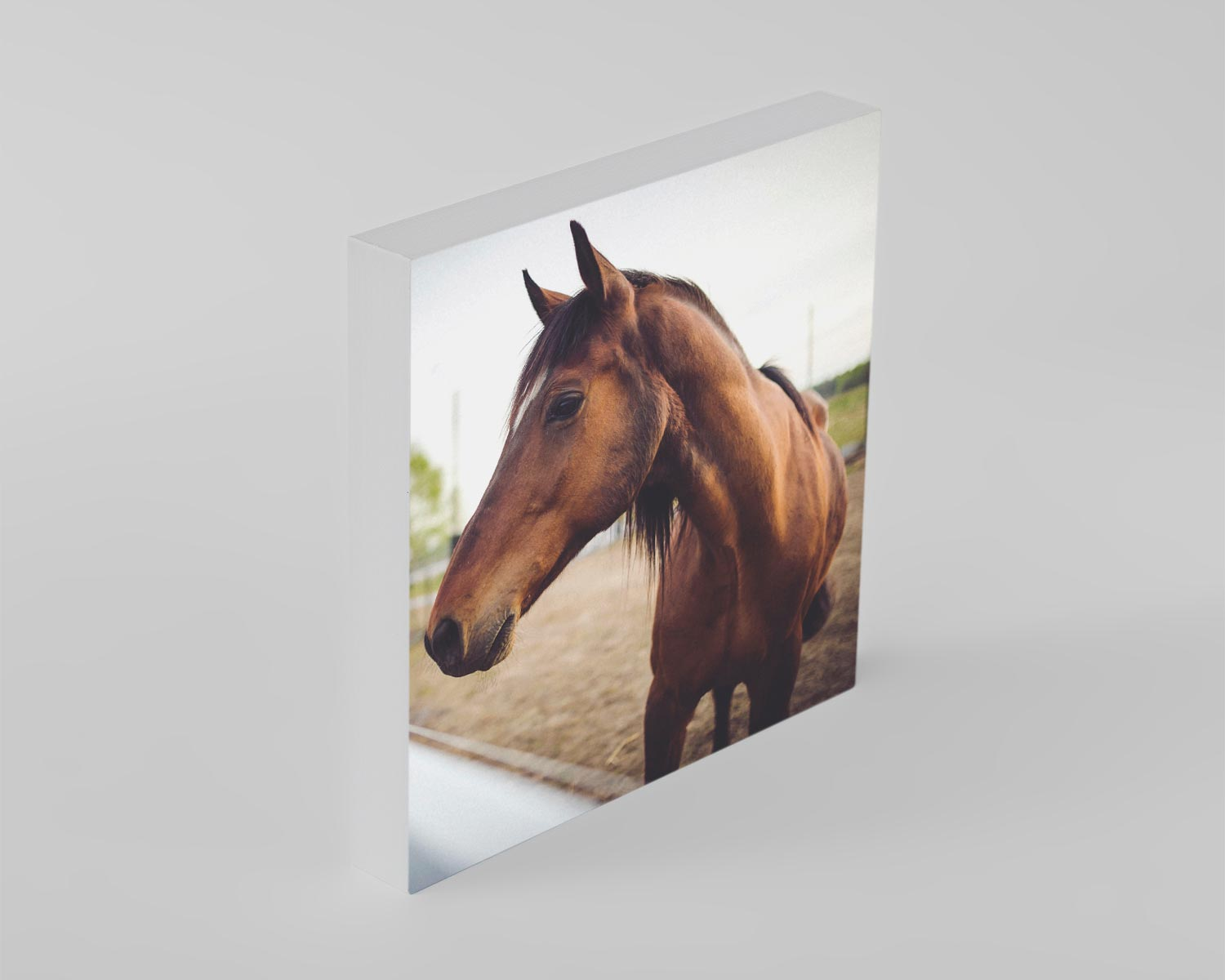 Square white edge photo block